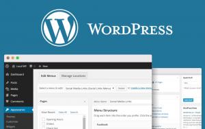 Installing Google Custom Search Engine (CSE) On WordPress Site