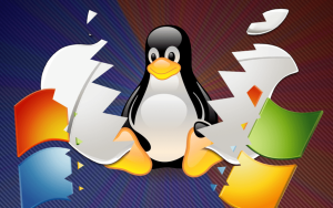 Windows vs Linux: Which One do I Need?
