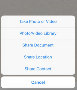 iOS document sharing feature for WhatsApp