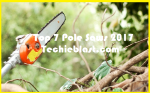 pole saw reviews